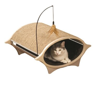 Cat Eye Bed