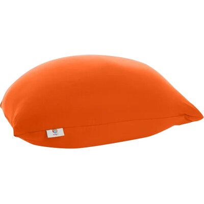 Pouf Bean Bag Chair Upholstery: Orange