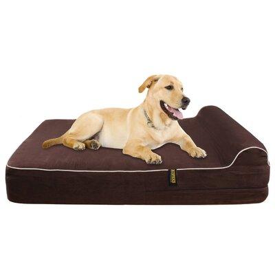 Cierra Orthopedic Memory Foam Dog Cot Color: Dark Chocolate