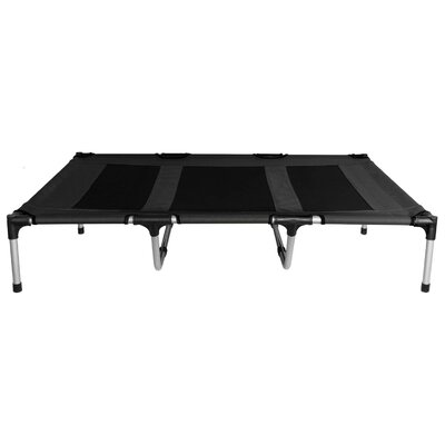 Carmen Elevated Indoor/Outdoor Portable Bed Cot Color: Black