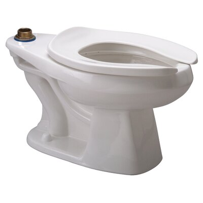 Dual Flush Elongated Toilet Bowl ADA Compliant: No, Buy American Compliant: No