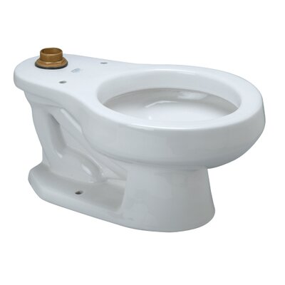 Dual Flush Elongated Childrens Toilet