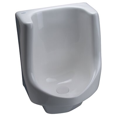 Large Waterless Urinal