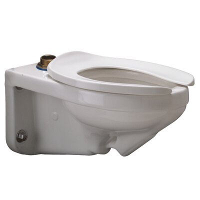 Wall Mounted Dual Flush Elongated Toilet Bowl Buy American Compliant: Yes
