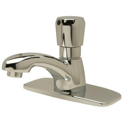 AquaSpec Single Basin Metering Faucet Finish: Chrome