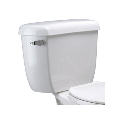 Pressure Assist Dual Flush Toilet Tank Trip Lever Orientation: Right-Hand