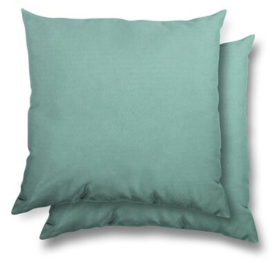 Huntington Eco Friendly Outdoor/Indoor Throw Pillow Color: Glacier