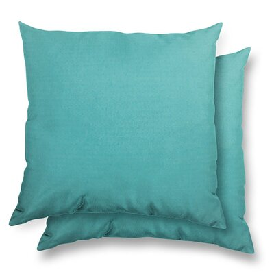 Huntington Eco Friendly Outdoor/Indoor Throw Pillow Color: Aruba