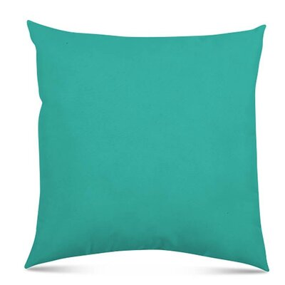 Bayview Eco-Friendly Outdoor Throw Pillow Color: Atlantis