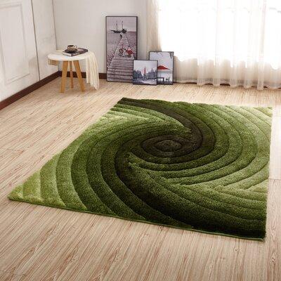 Kleiber Shaggy 3D Green Area Rug