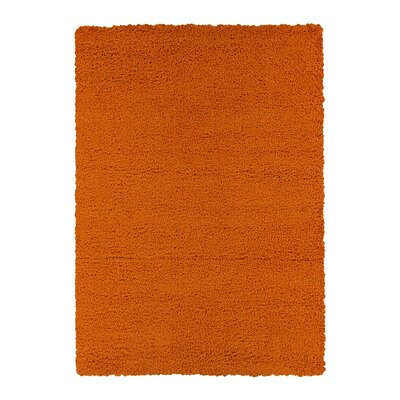 Kleiman Shaggy Solid Orange Area Rug Rug Size: 8 x 10