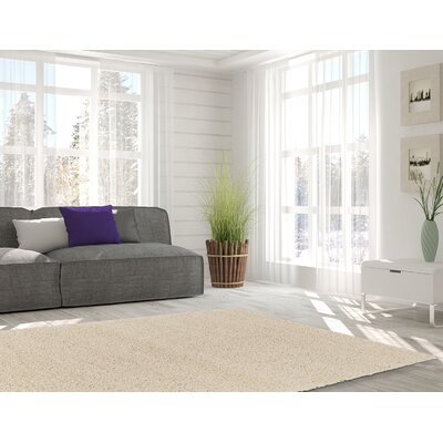 Kleiman Shaggy Solid Ivory Area Rug Rug Size: Rectangle 5 x 7