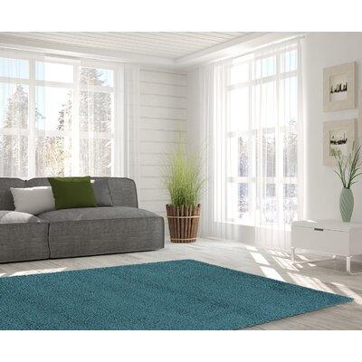 Kleiman Shaggy Solid Turquoise Area Rug Rug Size: 5 x 7