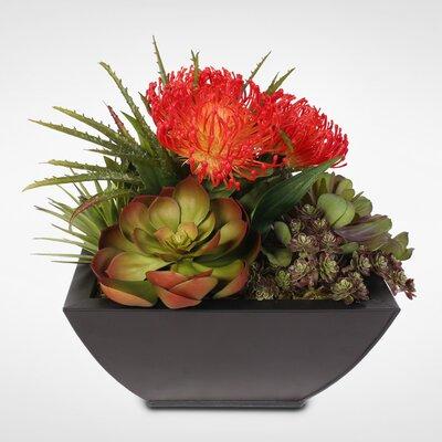 Tropical Artificial Desktop Succulent Arrangement Plant in Planter