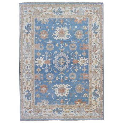 One-of-a-Kind Herlinda Oushak Hand Woven Wool Blue Area Rug