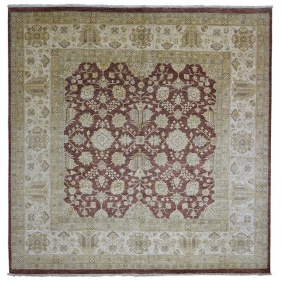 Ardith Hand Woven Wool Red/Beige Area Rug