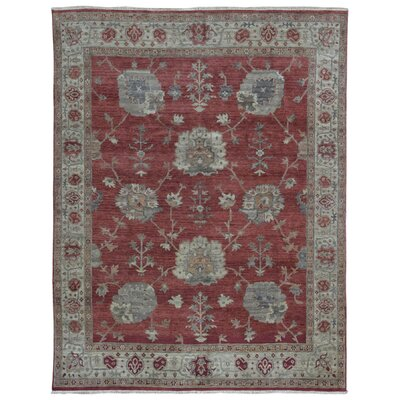 Ardith Rectangle Hand Woven Wool Red/Beige Area Rug