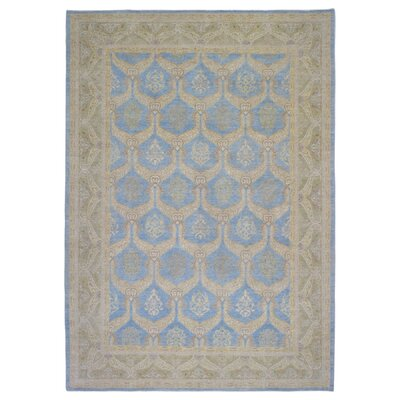 One-of-a-Kind Ardith Hand Woven Wool Blue Area Rug