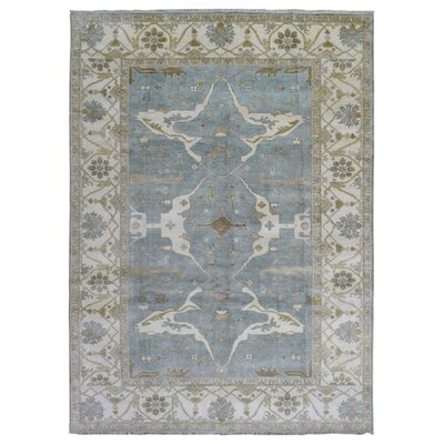 One-of-a-Kind Mitchel Hand Woven Wool Blue/Beige Area Rug
