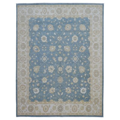 One-of-a-Kind Ardith Traditional Hand-Woven Wool Blue Area Rug