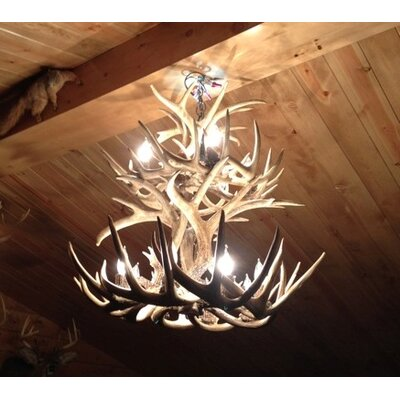 Doliya Antler Whitetail Double Tier 12-Light Candle-Style Chandelier Finish: Rustic Bronze/Sunbleached, Shade Color: Rawhide, Shade Included: Yes