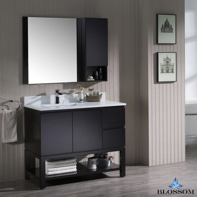 Maly Modern 42 Single Bathroom Vanity Set with Rectangular Mirror Base Finish: Espresso