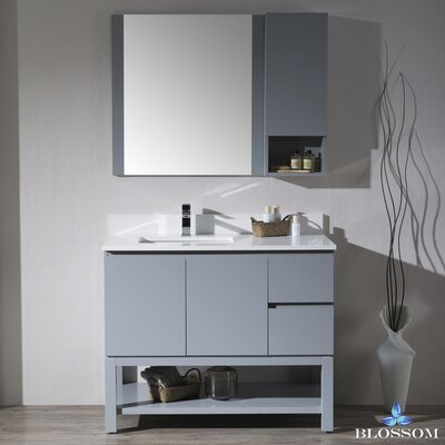 Maly Modern 42 Single Bathroom Vanity Set with Rectangular Mirror Base Finish: Metal Gray