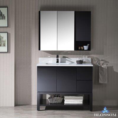 Maly Contemporary 42 Single Bathroom Vanity Set with Mirror Base Finish: Espresso