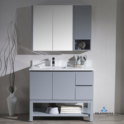 Maly Contemporary 42 Single Bathroom Vanity Set with Mirror Base Finish: Metal Gray