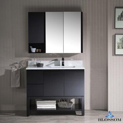 Maly 42 Single Bathroom Vanity Set with Mirror Base Finish: Espresso