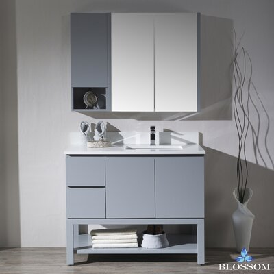Maly 42 Single Bathroom Vanity Set with Mirror Base Finish: Metal Gray