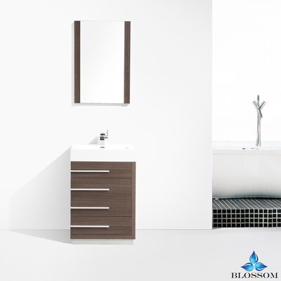 Manders 24 Single Bathroom Vanity Set with Mirror Base Finish: Gray Oak