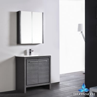 Artemis 29 Single Bathroom Vanity Set with Mirror Base Finish: Silver Gray