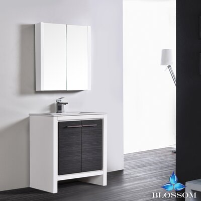 Artemis 29 Single Bathroom Vanity Set with Mirror Base Finish: Glossy White/Silver Gray
