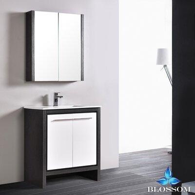 Artemis 29 Single Bathroom Vanity Set with Mirror Base Finish: Silver Gray/Glossy White