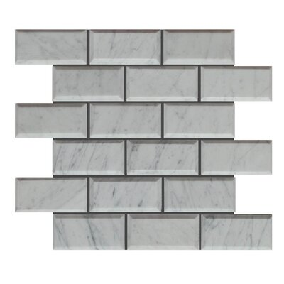 Pillow Edge Polished 2 x 4 Natural Stone Mosaic Tile in Carrara