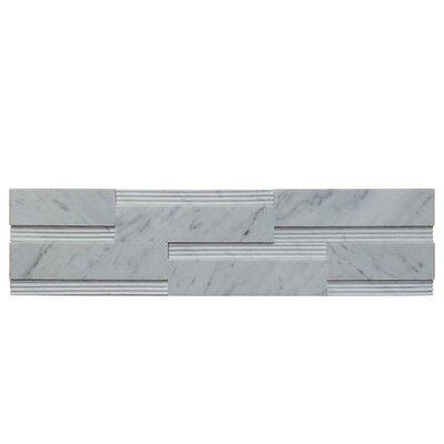 Wall Panel Polished Natural Stone Mosaic Tile in Carrara