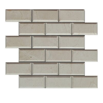 Pillow Edge Polished 2 x 4 Natural Stone Mosaic Tile in Crema Marfil