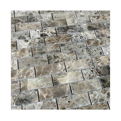 Polished 2 x 4 Natural Stone Mosaic Tile in Dark Emprador