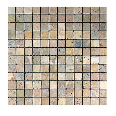 Tumbled 1 x 1 Natural Stone Mosaic Tile in Fantastico