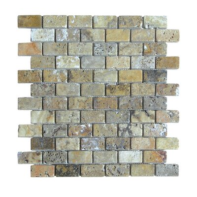Tumbled 1 x 2 Natural Stone Mosaic Tile in Fantastico