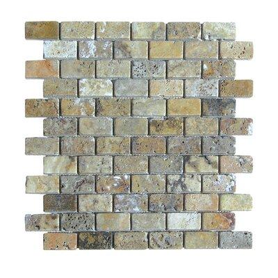 Tumbled 1 x 2 Natural Stone Mosaic Tile in Fantastico
