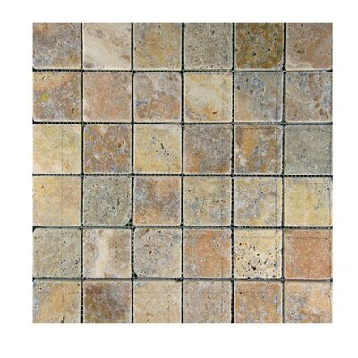 Tumbled 2 x 2 Natural Stone Mosaic Tile in Fantastico