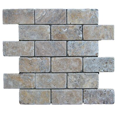 Tumbled 2 x 4 Natural Stone Mosaic Tile in Fantastico