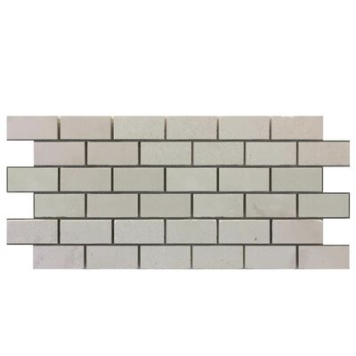 Honed 1 x 2 Natural Stone Mosaic Tile in Freska