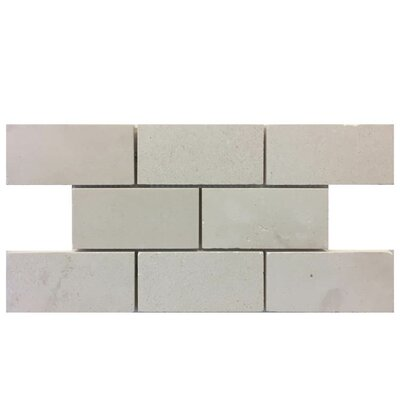 Honed 2 x 4 Natural Stone Mosaic Tile in Freska