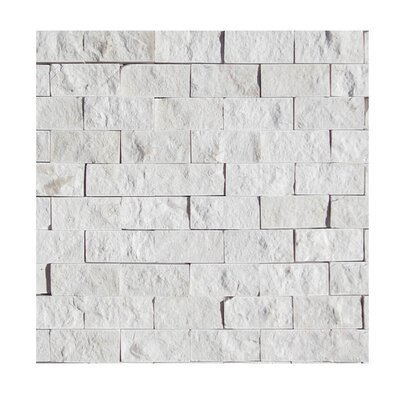 1 x 2 Natural Stone Mosaic Splitface Tile in Freska