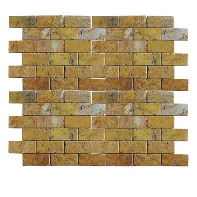 Tumbled 1 x 2 Natural Stone Mosaic Tile in Gold