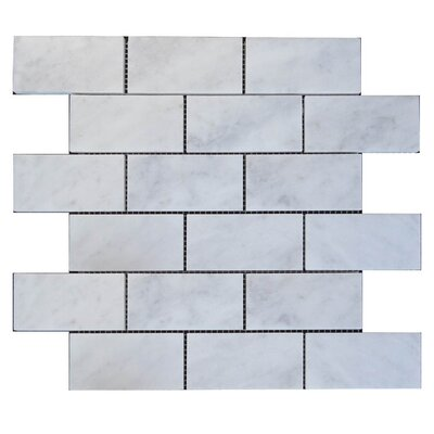 Polished 2 x 4 Natural Stone Mosaic Tile in Lusso Carrara