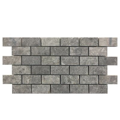 Tumbled 1 x 2 Natural Stone Mosaic Tile in Marine Fantasy